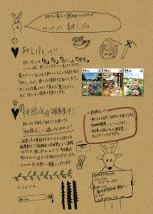 nanami_shinbun